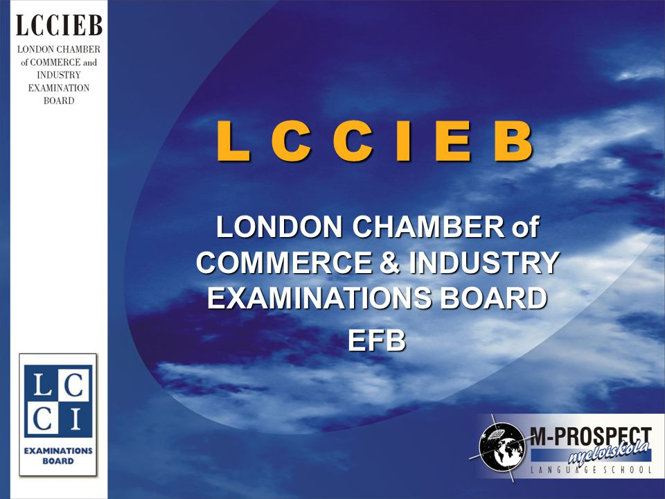 L C C I E B LONDON CHAMBER of COMMERCE & INDUSTRY EXAMINATIONS BOARD EFB