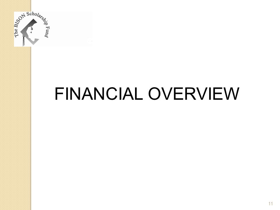 FINANCIAL OVERVIEW 11