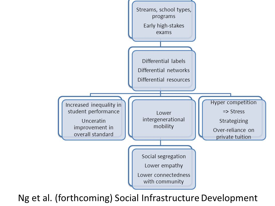 Streams, school types, programs Early high-stakes exams Differential labels Differential networks Differential resources Increased inequality in student performance Unceratin improvement in overall standard Lower intergenerational mobility Social segregation Lower empathy Lower connectedness with community Hyper competition => Stress Strategizing Over-reliance on private tuition Ng et al.