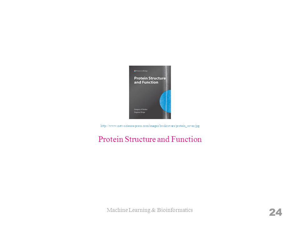 Machine Learning & Bioinformatics 24 Protein Structure and Function http://www.new-science-press.com/images/bookcovers/protein_cover.jpg