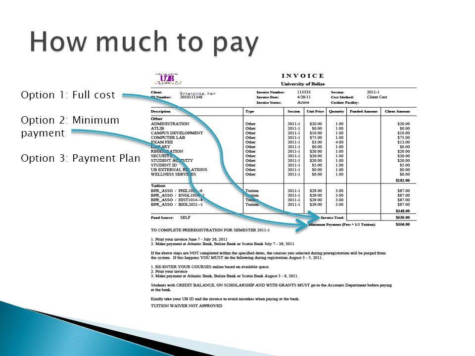 Option 1: Full cost Option 2: Minimum payment Option 3: Payment Plan