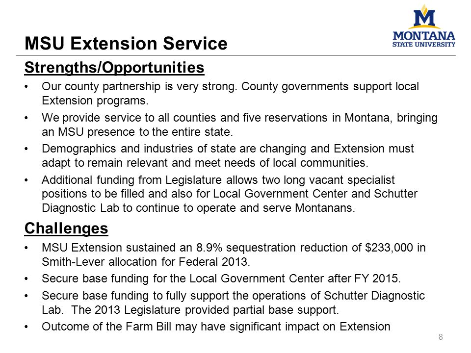 MSU Extension Service 8 Strengths/Opportunities Our county partnership is very strong. County governments support local Extension programs. We provide