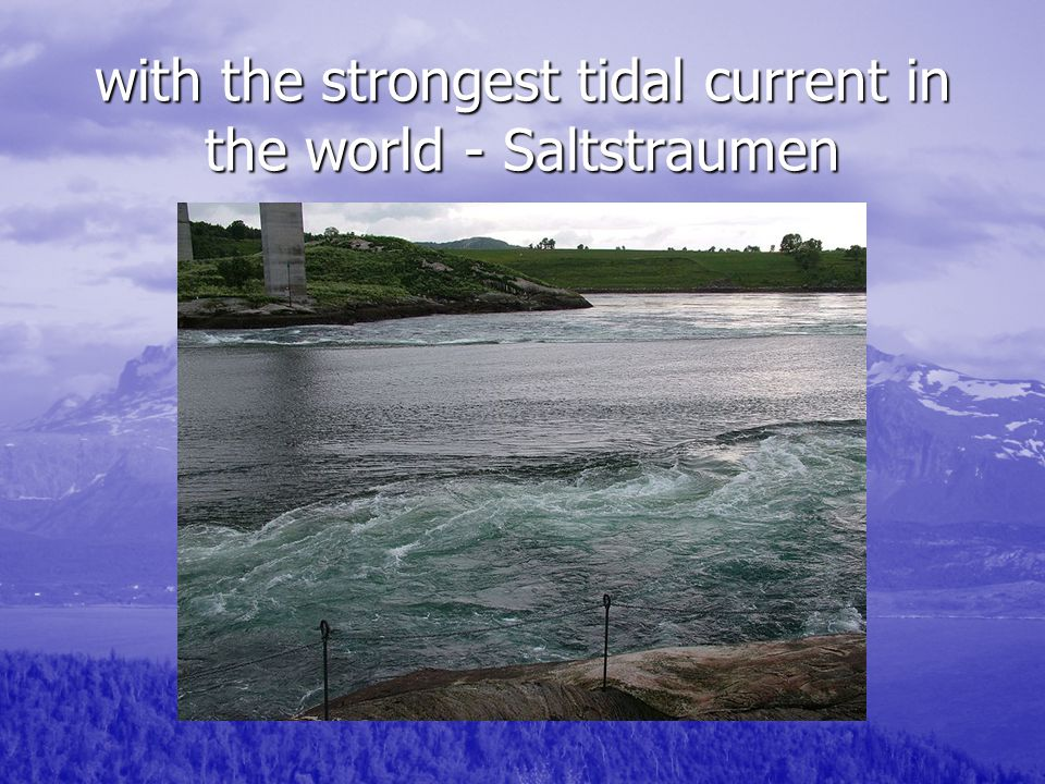 with the strongest tidal current in the world - Saltstraumen
