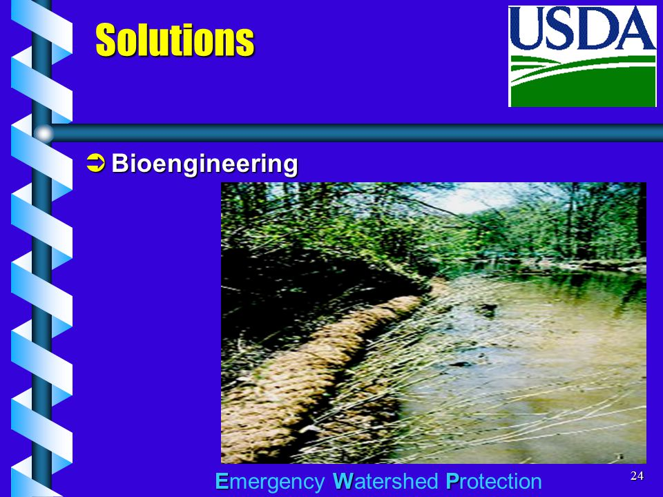 EWP Emergency Watershed Protection24  Bioengineering Solutions