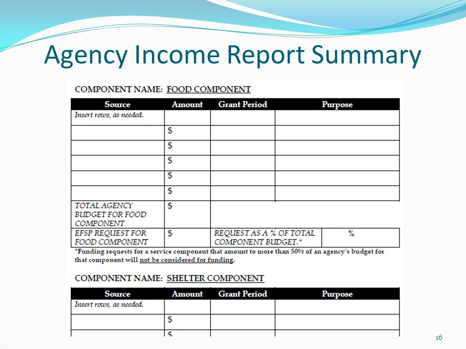 Agency Income Report Summary 16