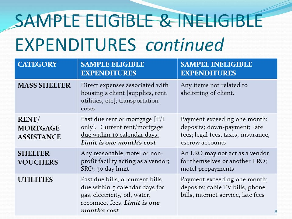 SAMPLE ELIGIBLE & INELIGIBLE EXPENDITURES continued CATEGORYSAMPLE ELIGIBLE EXPENDITURES SAMPEL INELIGIBLE EXPENDITURES MASS SHELTER Direct expenses associated with housing a client [supplies, rent, utilities, etc]; transportation costs Any items not related to sheltering of client.