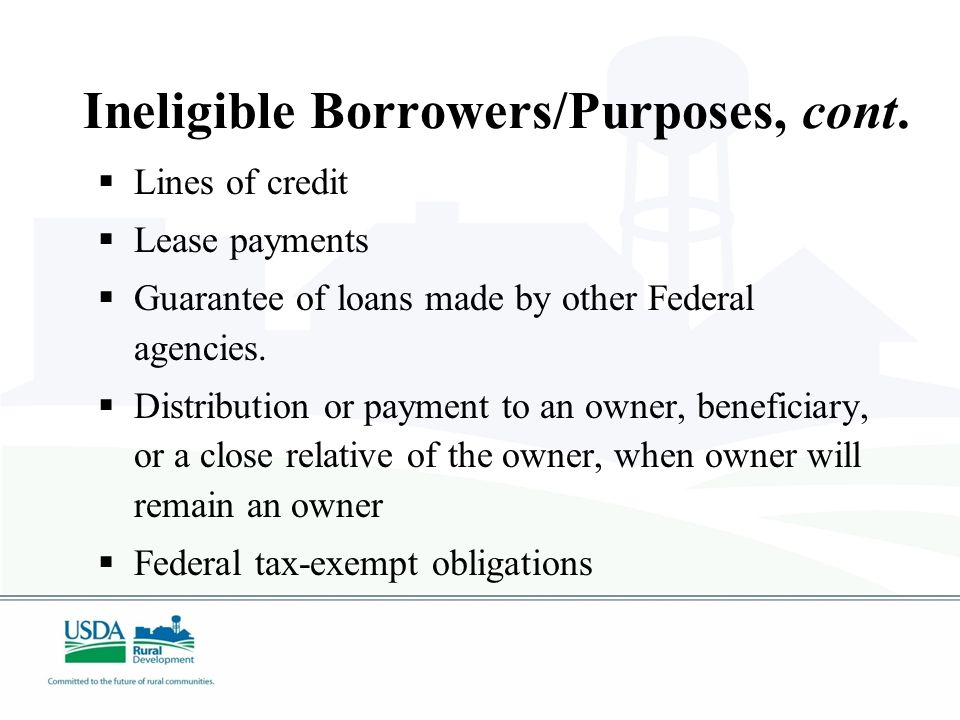 Ineligible Borrowers/Purposes  Charitable institutions  Churches or church-controlled organizations  Fraternal organizations  Lending and investment institutions  Insurance companies  Businesses engaged in illegal activity  Golf courses