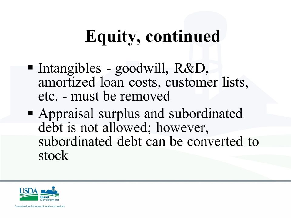 Tangible Balance Sheet Equity  Financial statements must be prepared in accordance with GAAP (may be In-house financials)  Minimum of 10 percent required for existing businesses  Minimum of 20 percent required for new businesses  Minimum of 25-40 percent required for energy projects, depending on certain criteria.