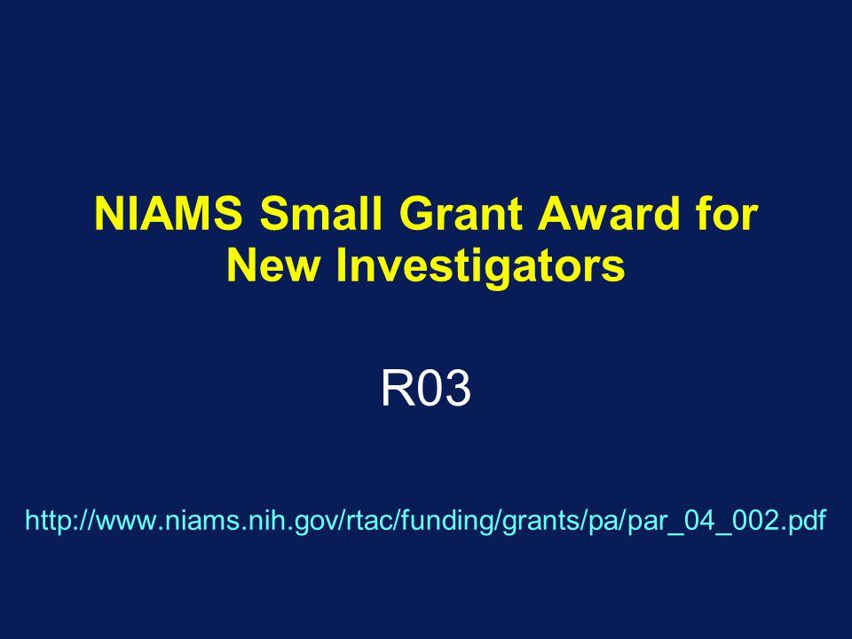 NIAMS Small Grant Award for New Investigators R03 http://www.niams.nih.gov/rtac/funding/grants/pa/par_04_002.pdf