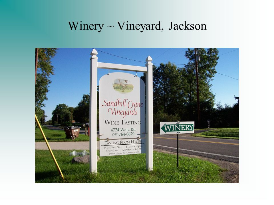 Winery ~ Vineyard, Jackson