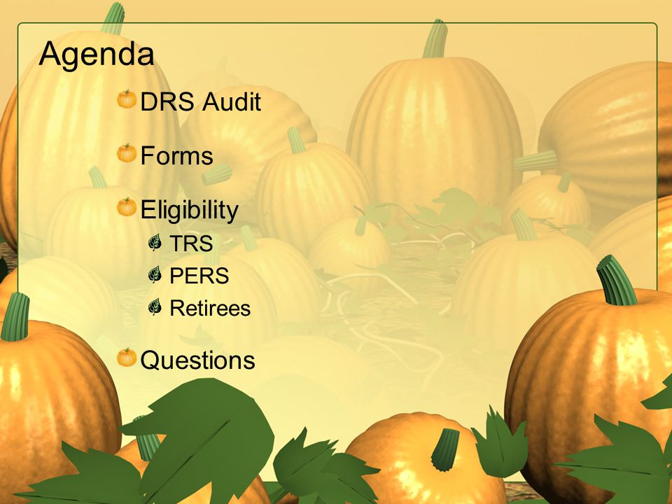Agenda DRS Audit Forms Eligibility TRS PERS Retirees Questions