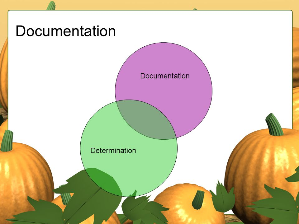 Documentation Determination Documentation
