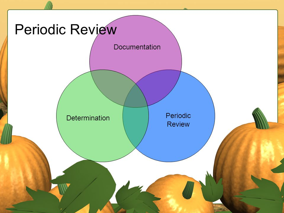Periodic Review Documentation Determination Periodic Review