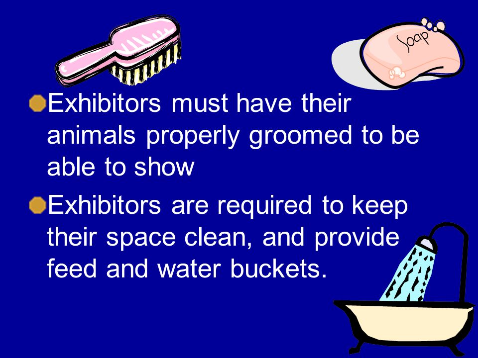 Exhibitors must have their animals properly groomed to be able to show Exhibitors are required to keep their space clean, and provide feed and water buckets.