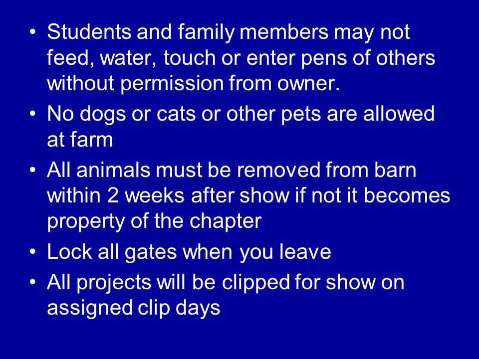 Students and family members may not feed, water, touch or enter pens of others without permission from owner. No dogs or cats or other pets are allowe