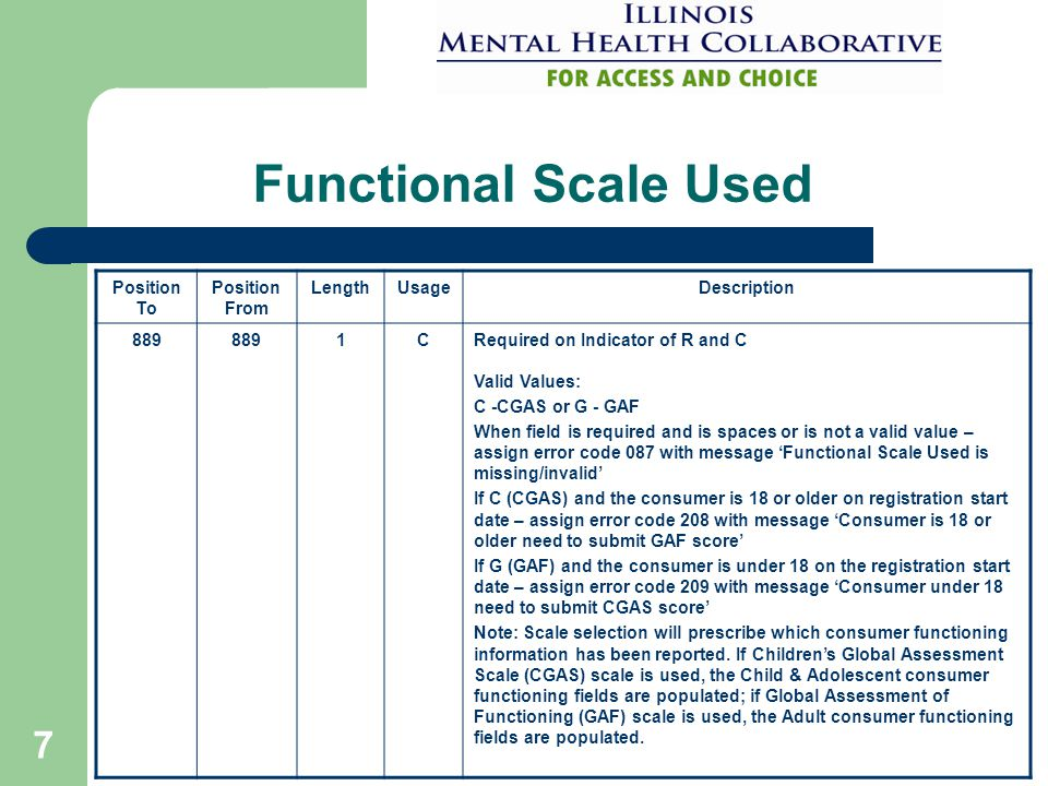 7 Functional Scale Used Position To Position From LengthUsageDescription 889 1CRequired on Indicator of R and C Valid Values: C -CGAS or G - GAF When