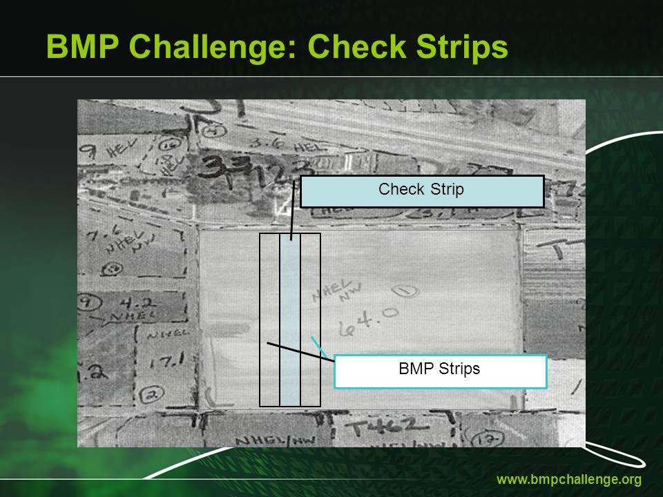 www.bmpchallenge.org BMP Challenge: Check Strips Check Strip BMP Strips