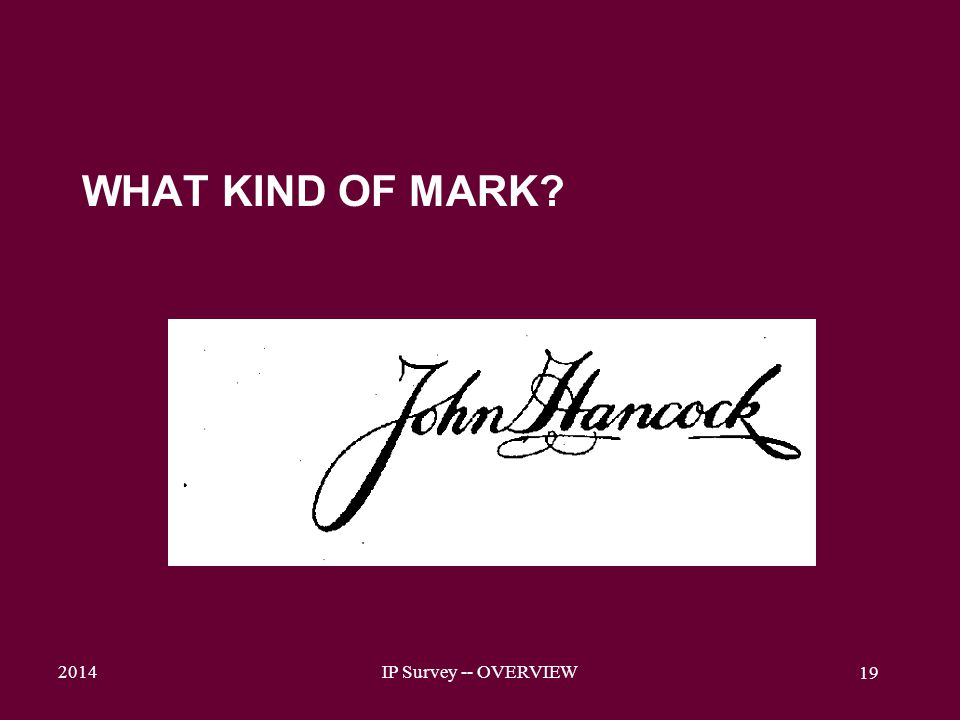 2014IP Survey -- OVERVIEW 19 WHAT KIND OF MARK