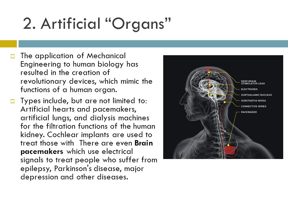 """2. Artificial """"Organs""""  The application of Mechanical Engineering to human biology has resulted in the creation of revolutionary devices, which mimic"""
