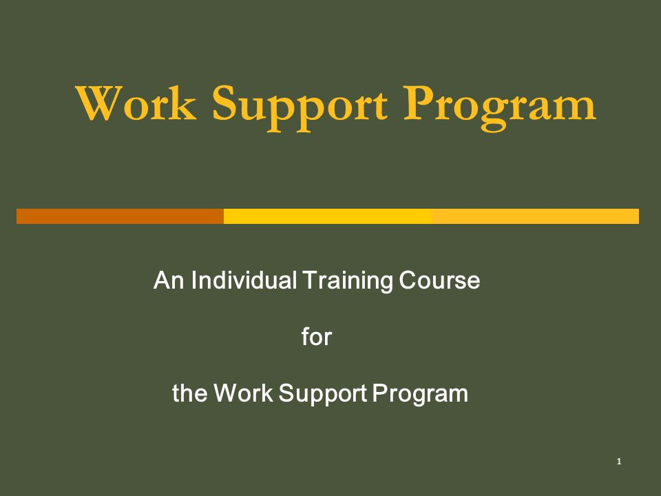 2 What is the Work Support Program.