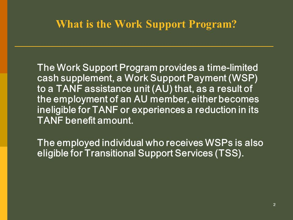 23 Helping clients keep their jobs (cont.) The case manager, resource specialist and others working with the WSP recipient need to  monitor the recipient's ongoing employment  help the recipient develop problem-solving skills in personal life situations that may impact negatively on the recipient's ability to remain employed  help the recipient resolve employment-related conflicts.
