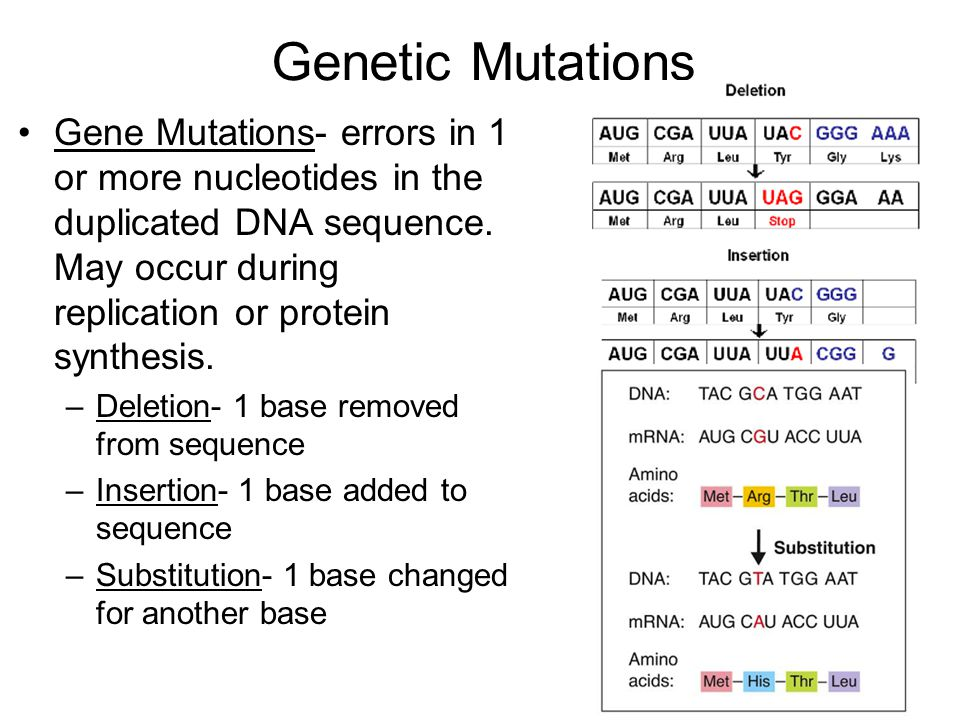 Genetic Mutations Gene Mutations- errors in 1 or more nucleotides in the duplicated DNA sequence.