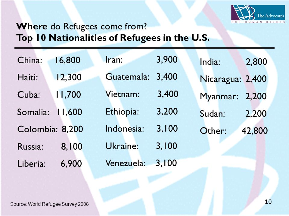 10 Source: World Refugee Survey 2008 Where do Refugees come from.