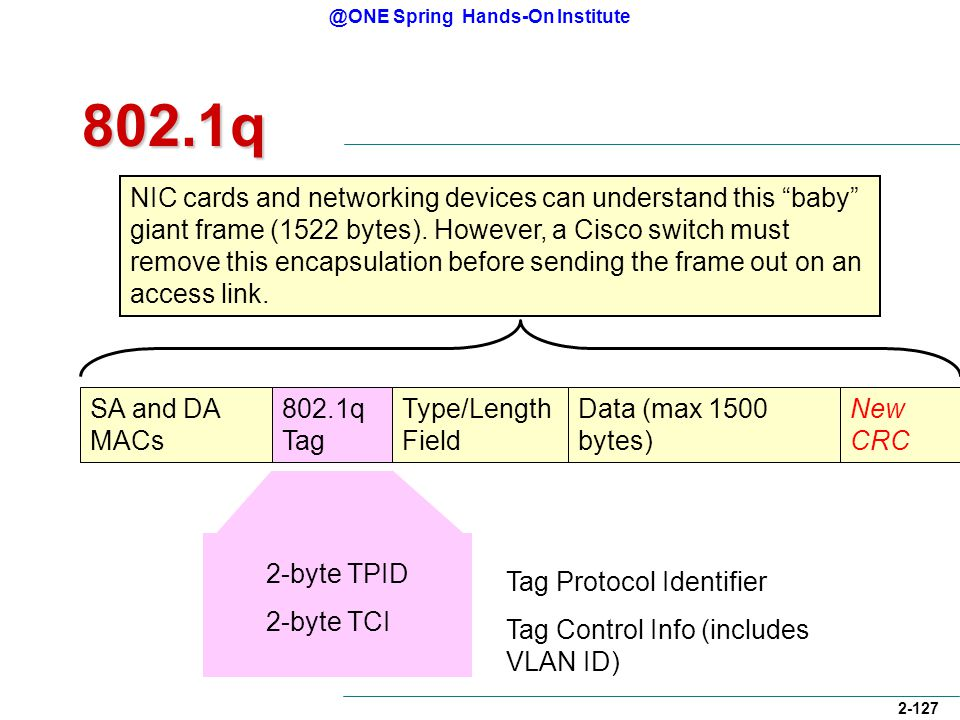 @ONE Spring Hands-On Institute 2-127 2-byte TPID 2-byte TCI 802.1q SA and DA MACs 802.1q Tag Type/Length Field Data (max 1500 bytes) CRCNew CRC NIC cards and networking devices can understand this baby giant frame (1522 bytes).