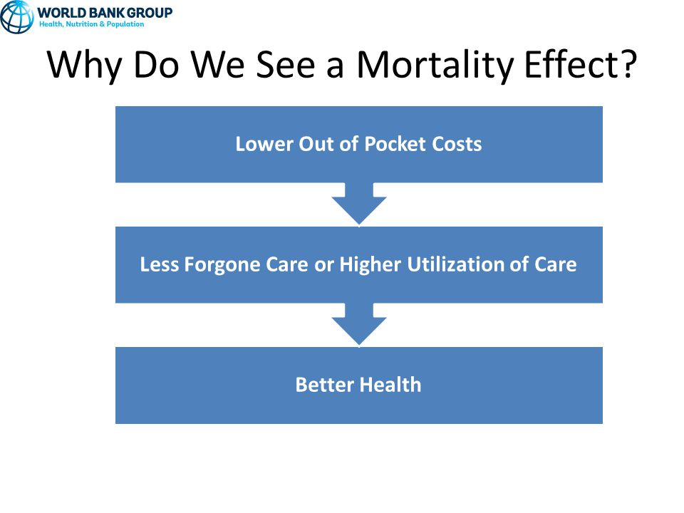 Why Do We See a Mortality Effect.