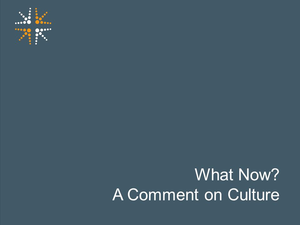 14 What Now? A Comment on Culture