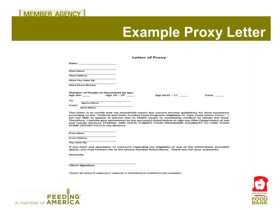 Example Proxy Letter