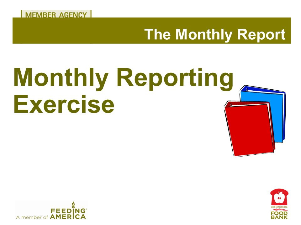 Monthly Reporting Exercise The Monthly Report