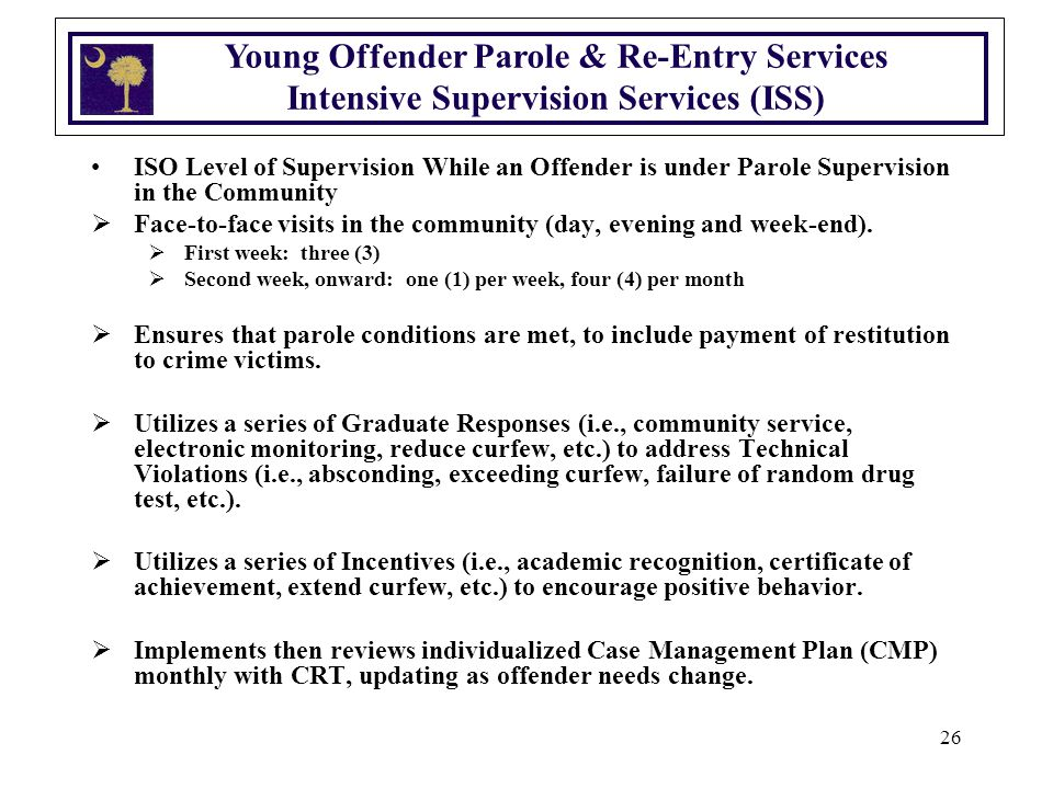 26 Young Offender Parole & Re-Entry Services Intensive Supervision Services (ISS) ISO Level of Supervision While an Offender is under Parole Supervision in the Community  Face-to-face visits in the community (day, evening and week-end).