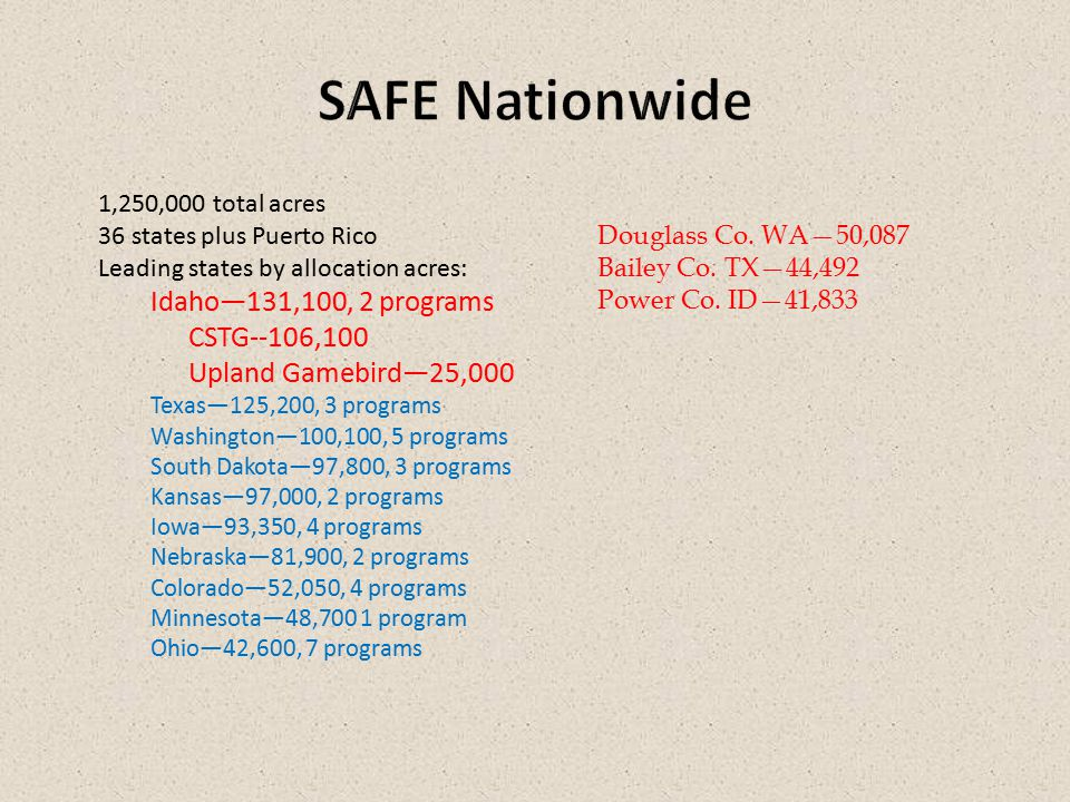 Active SAFE Contracts