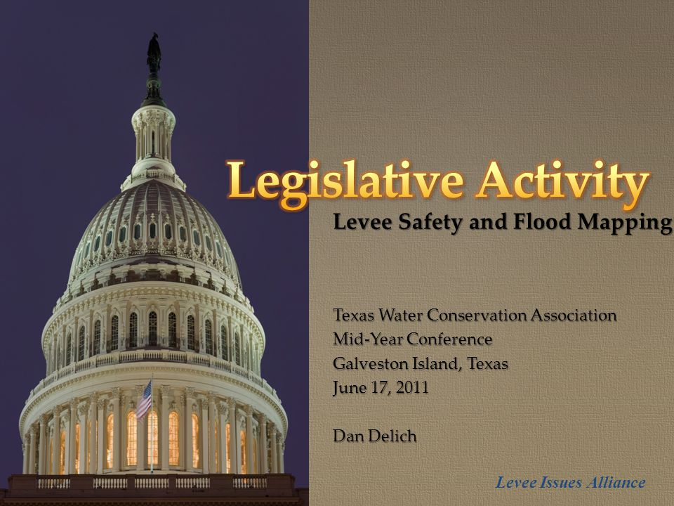 { Levee Safety and Flood Mapping Texas Water Conservation Association Mid-Year Conference Galveston Island, Texas June 17, 2011 Dan Delich Levee Issues Alliance