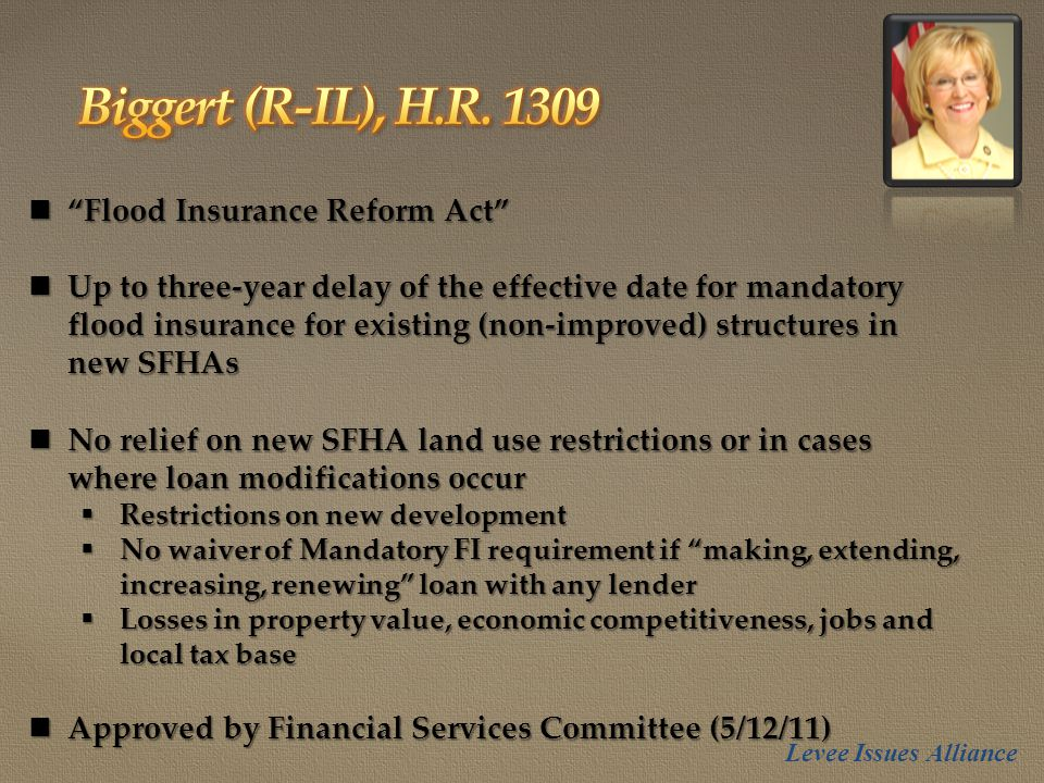 Flood Insurance Reform Act Flood Insurance Reform Act Up to three-year delay of the effective date for mandatory flood insurance for existing (non-improved) structures in new SFHAs Up to three-year delay of the effective date for mandatory flood insurance for existing (non-improved) structures in new SFHAs No relief on new SFHA land use restrictions or in cases where loan modifications occur No relief on new SFHA land use restrictions or in cases where loan modifications occur  Restrictions on new development  No waiver of Mandatory FI requirement if making, extending, increasing, renewing loan with any lender  Losses in property value, economic competitiveness, jobs and local tax base Approved by Financial Services Committee (5/12/11) Approved by Financial Services Committee (5/12/11) Levee Issues Alliance