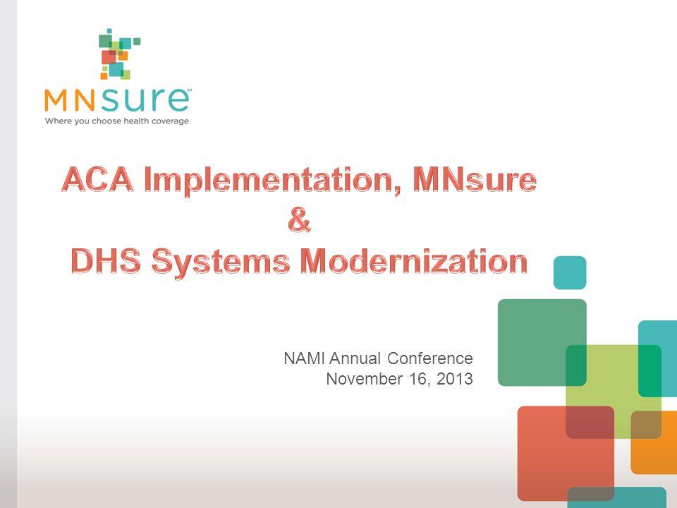 NAMI Annual Conference November 16, 2013