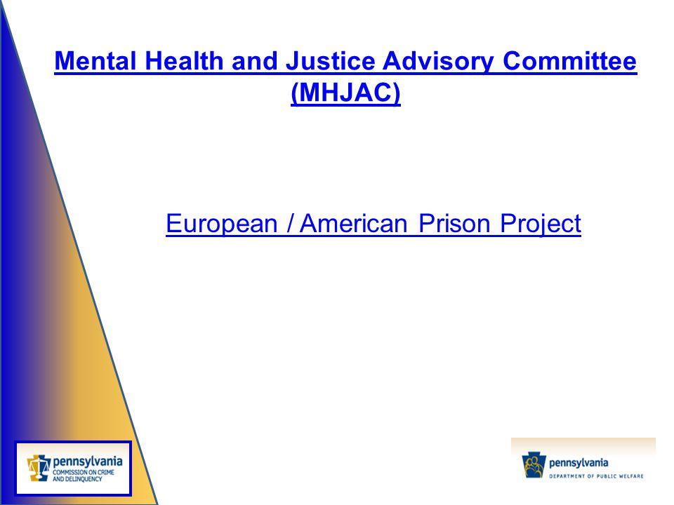 European / American Prison Project