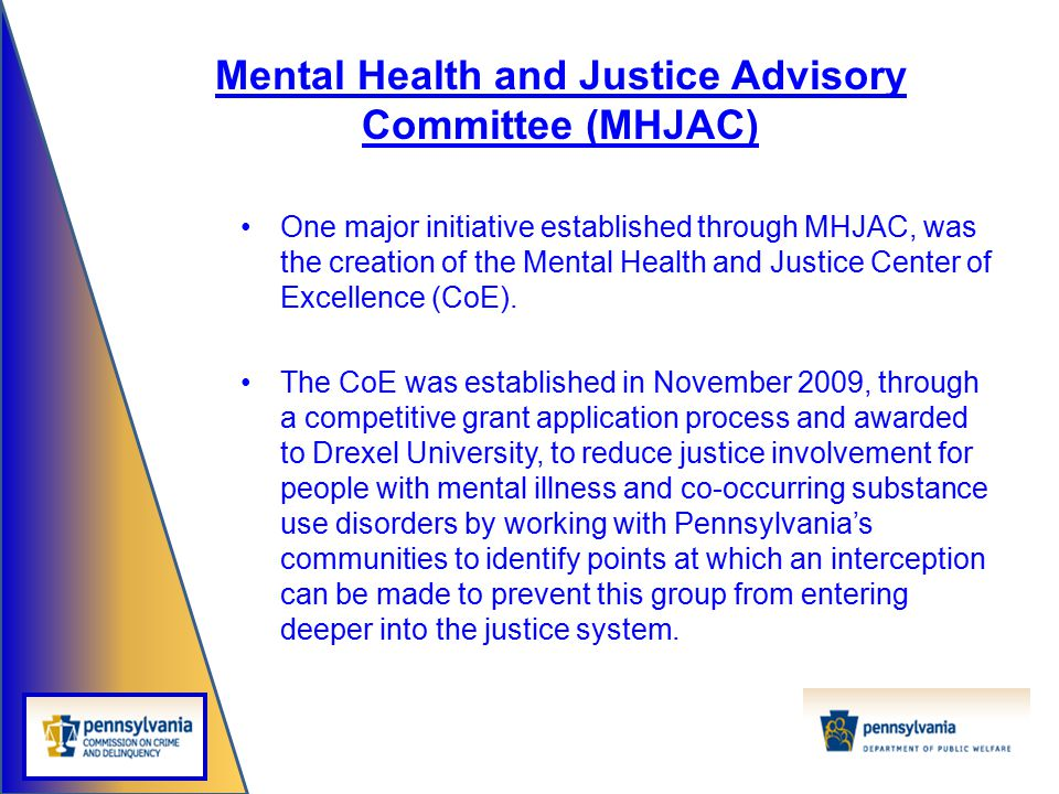 One major initiative established through MHJAC, was the creation of the Mental Health and Justice Center of Excellence (CoE). The CoE was established