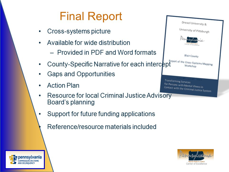 Final Report Cross-systems picture Available for wide distribution –Provided in PDF and Word formats County-Specific Narrative for each intercept Gaps