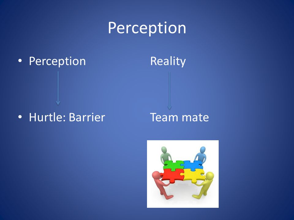 Perception Perception Reality Hurtle: BarrierTeam mate