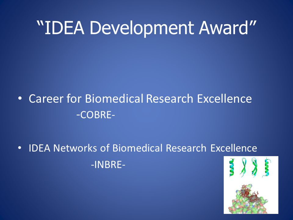 """IDEA Development Award"" Career for Biomedical Research Excellence - COBRE- IDEA Networks of Biomedical Research Excellence -INBRE-"