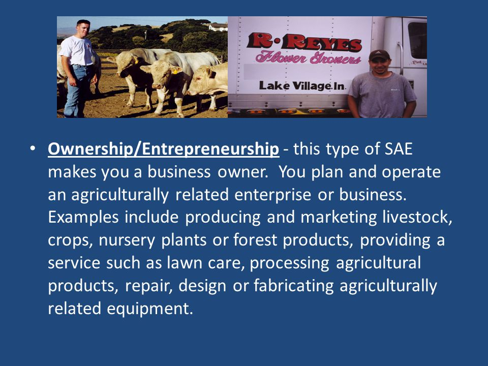 Ownership/Entrepreneurship - this type of SAE makes you a business owner.