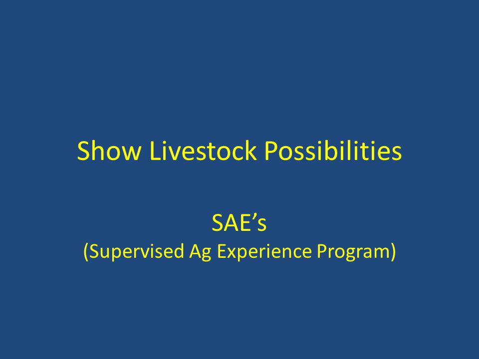 Show Livestock Possibilities SAE's (Supervised Ag Experience Program)