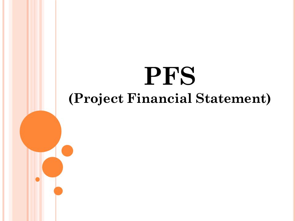 PFS (Project Financial Statement)