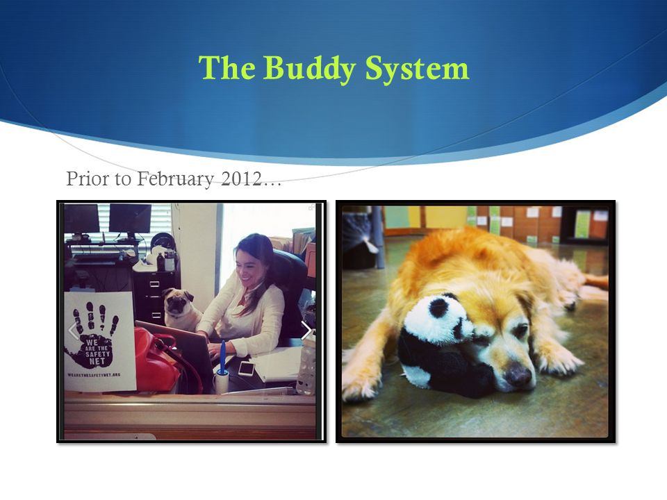 The Buddy System Prior to February 2012…