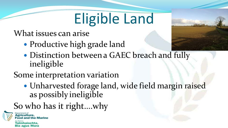 What issues can arise Productive high grade land Distinction between a GAEC breach and fully ineligible Some interpretation variation Unharvested fora