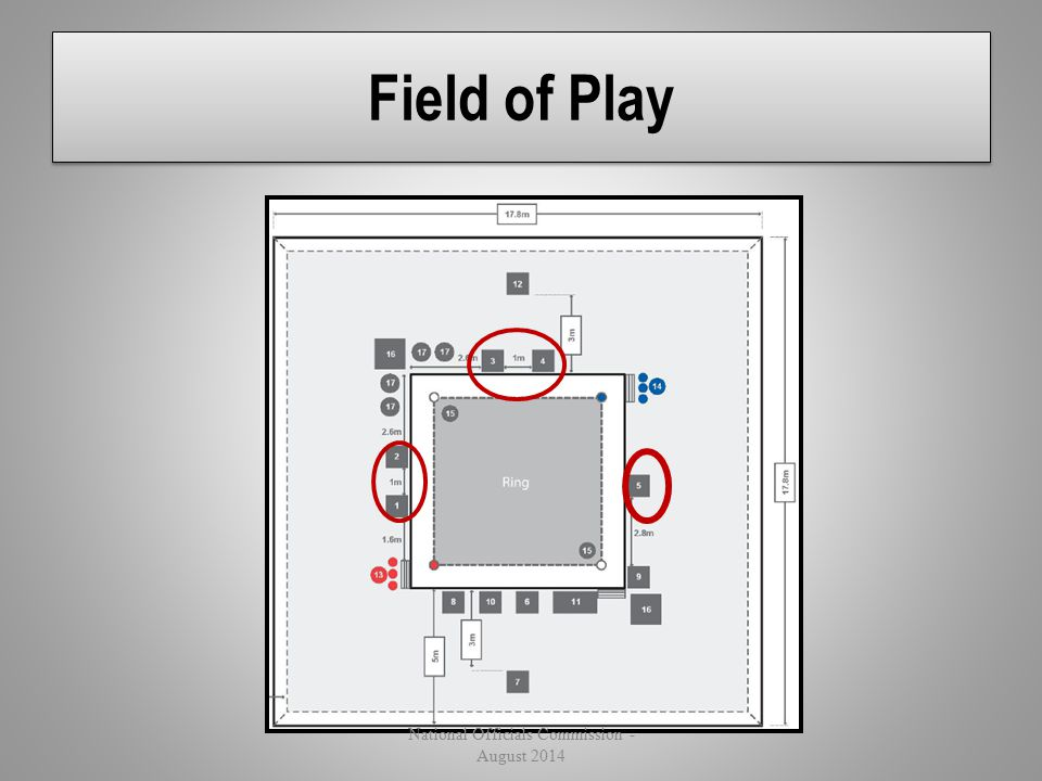 Field of Play National Officials Commission - August 2014
