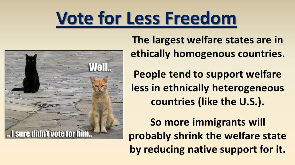 Vote for Less Freedom The largest welfare states are in ethically homogenous countries. People tend to support welfare less in ethnically heterogeneou