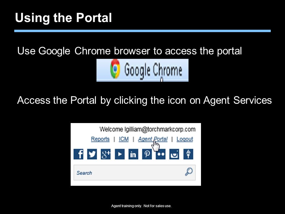 Agent training only. Not for sales use. Using the Portal Use Google Chrome browser to access the portal Access the Portal by clicking the icon on Agen